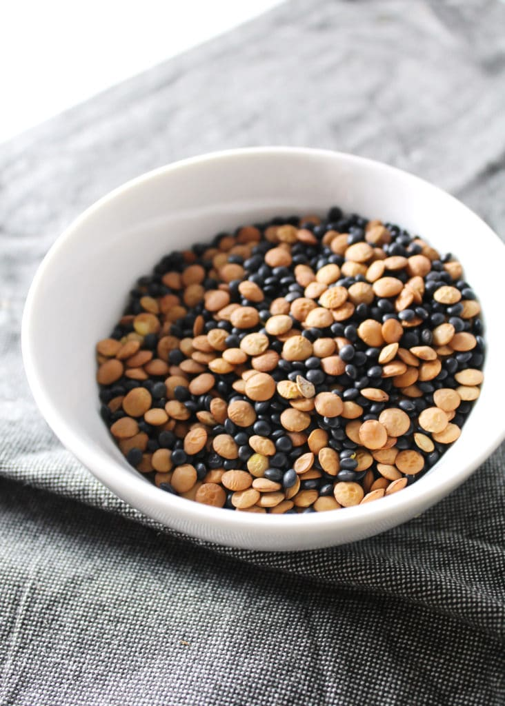 Mixed Lentils in a White Bowl