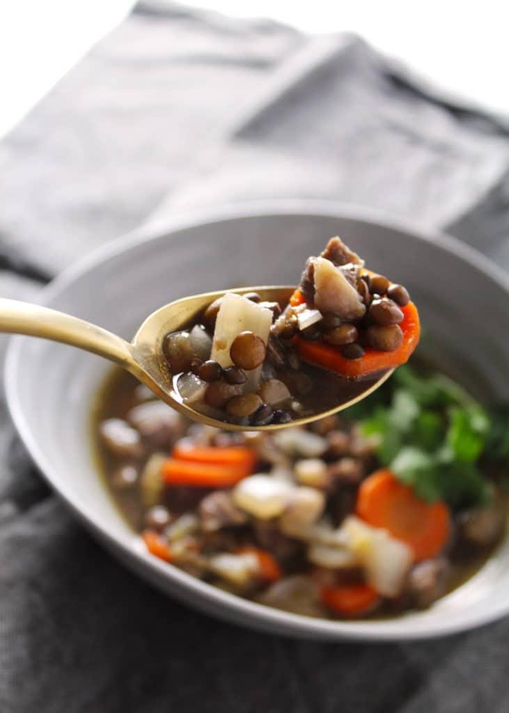 spoonful of lentil beef stew