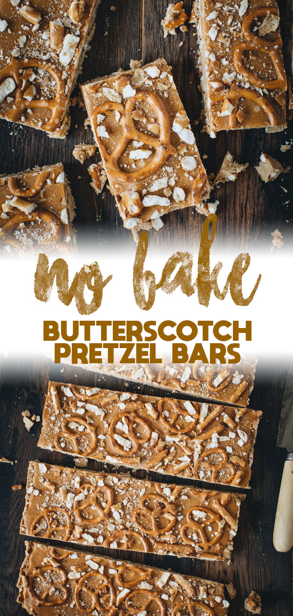 butterscotch pretzel bars long pin