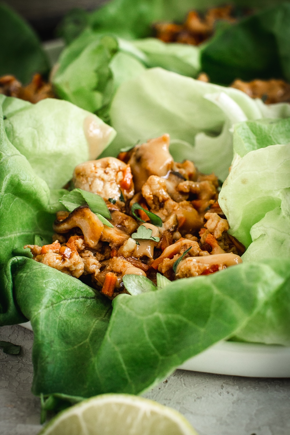 close up of Asian flavored chicken lettuce wraps